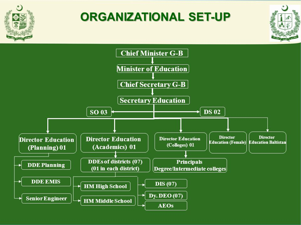 ORGANIZATIONAL SET-UP
