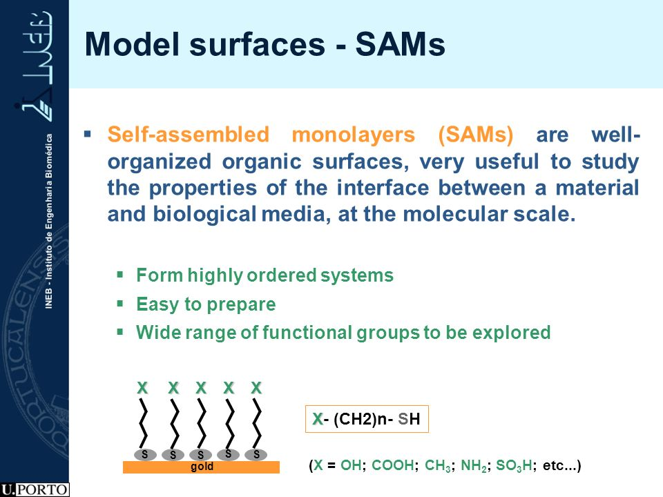 Model surfaces - SAMs