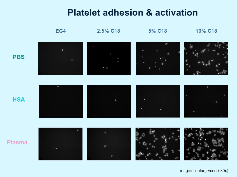 Platelet adhesion & activation
