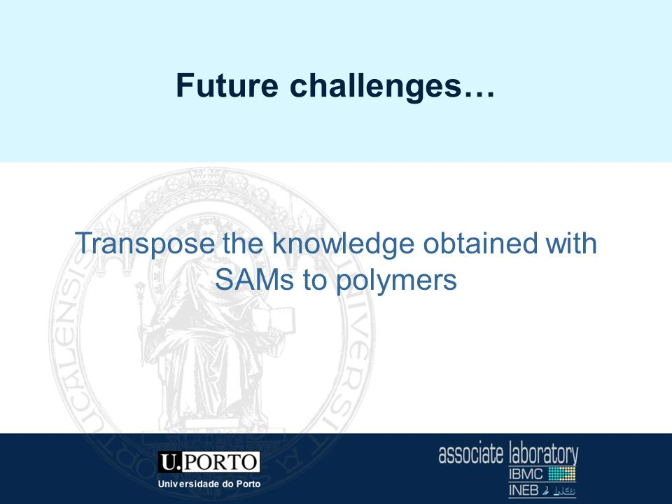 Transpose the knowledge obtained with SAMs to polymers