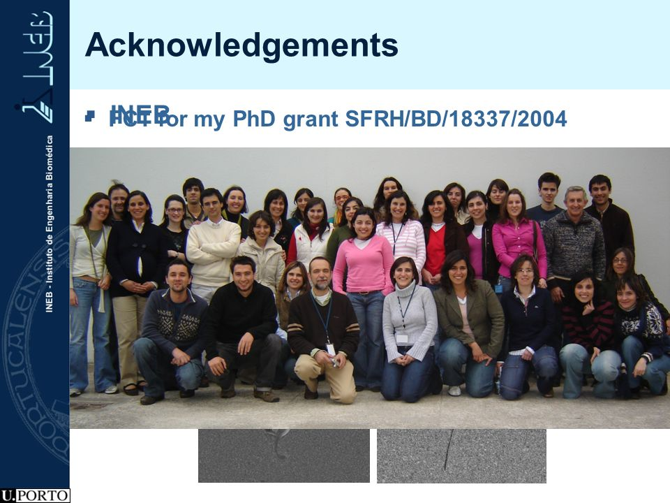 Acknowledgements INEB FCT for my PhD grant SFRH/BD/18337/2004