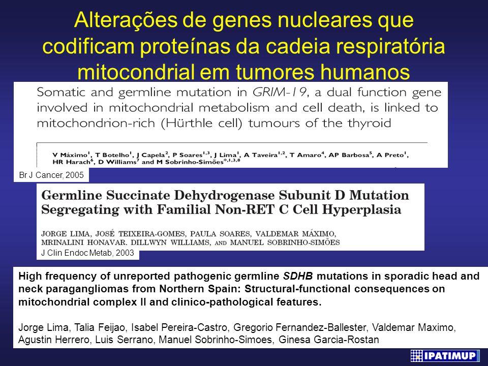 Alterações de genes nucleares que codificam proteínas da cadeia respiratória mitocondrial em tumores humanos