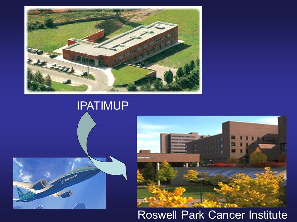 IPATIMUP Roswell Park Cancer Institute