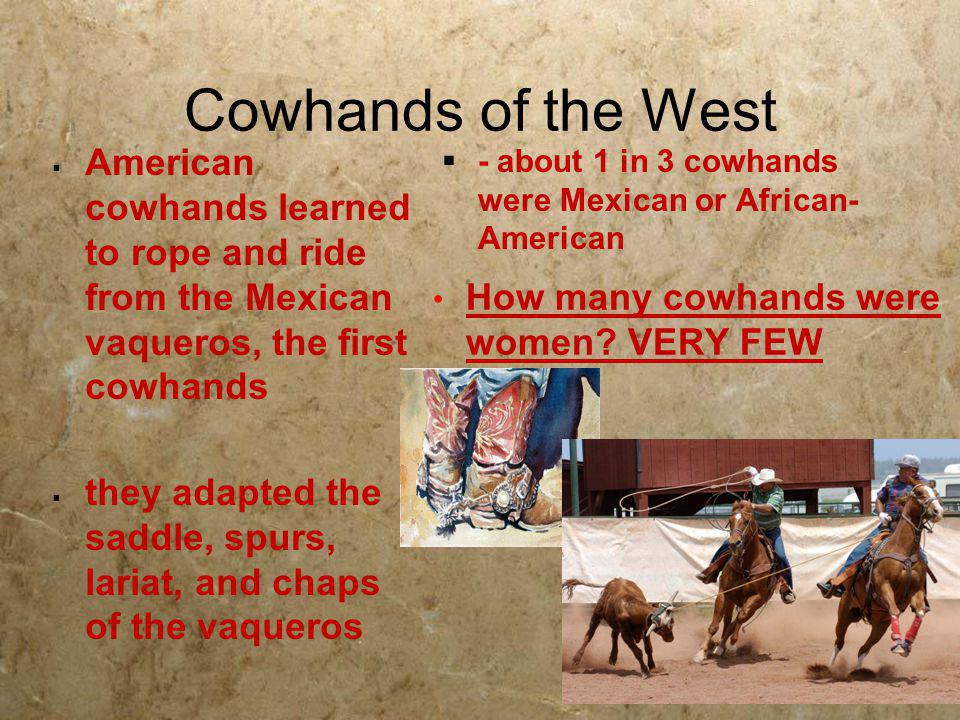 Cowhands of the West American cowhands learned to rope and ride from the Mexican vaqueros, the first cowhands.