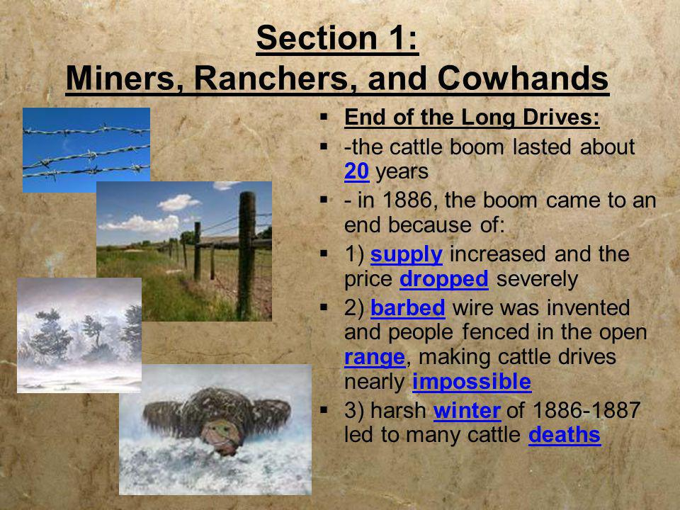 Section 1: Miners, Ranchers, and Cowhands