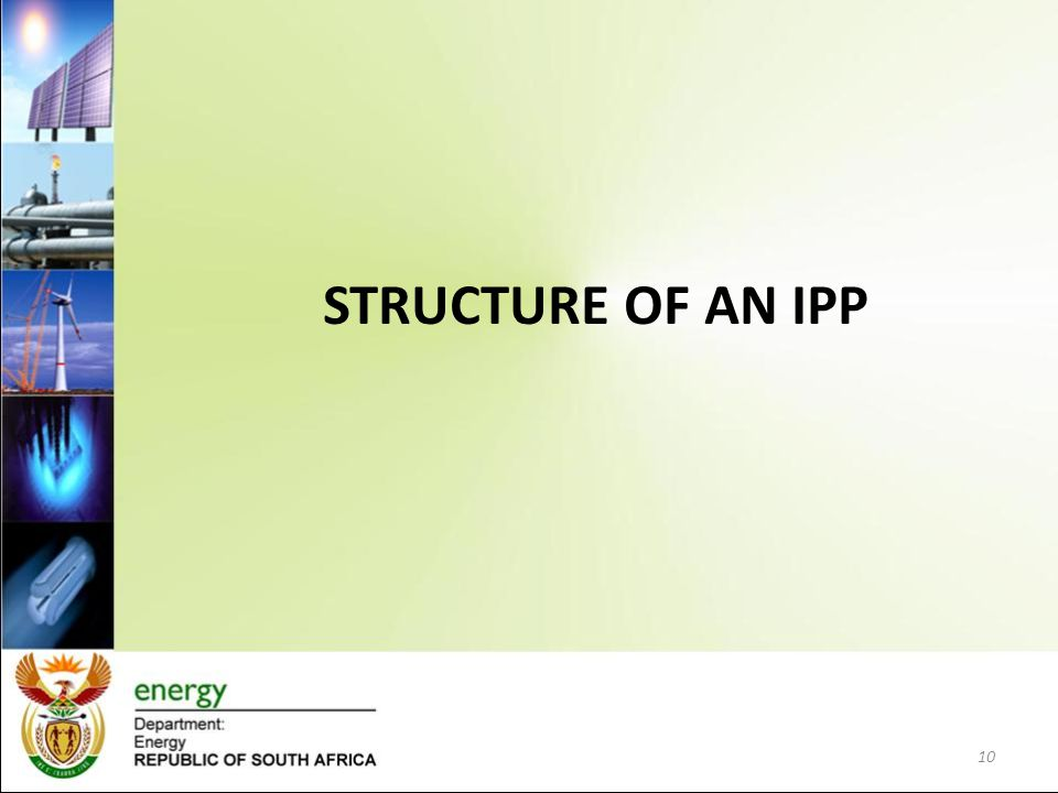 STRUCTURE OF AN IPP