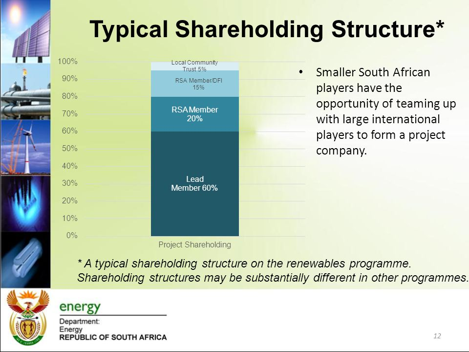 Typical Shareholding Structure*