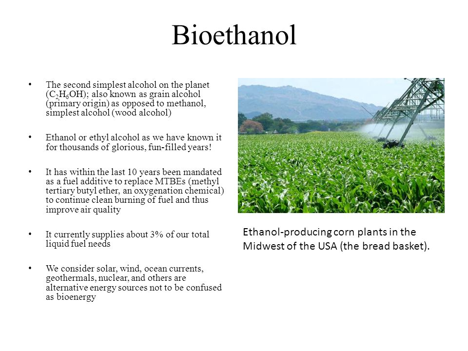 Bioethanol Ethanol-producing corn plants in the