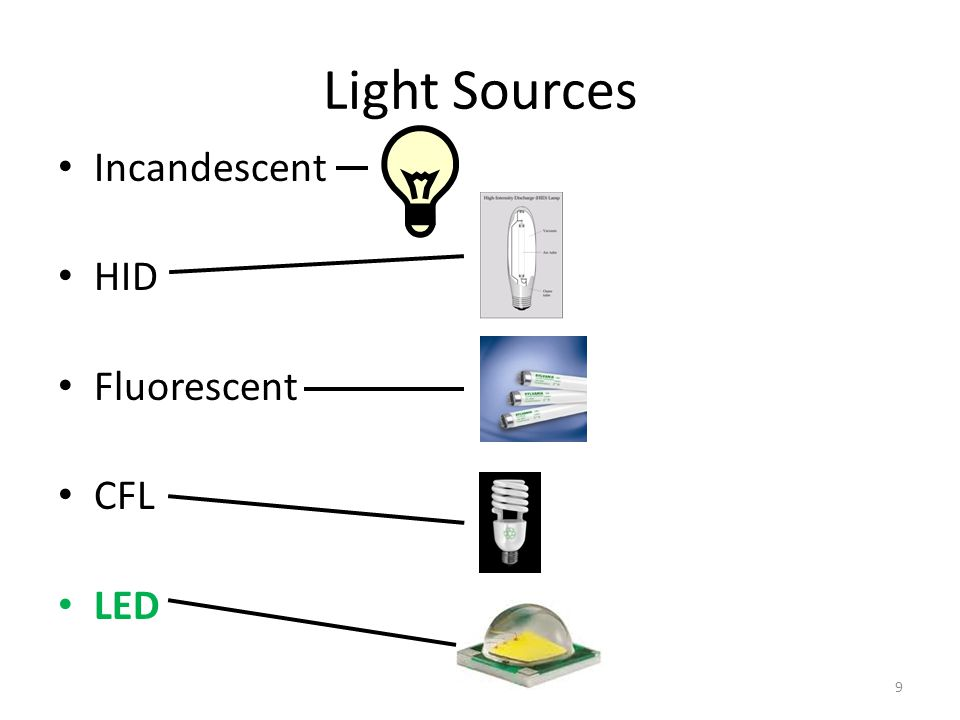 Light Sources Incandescent HID Fluorescent CFL LED