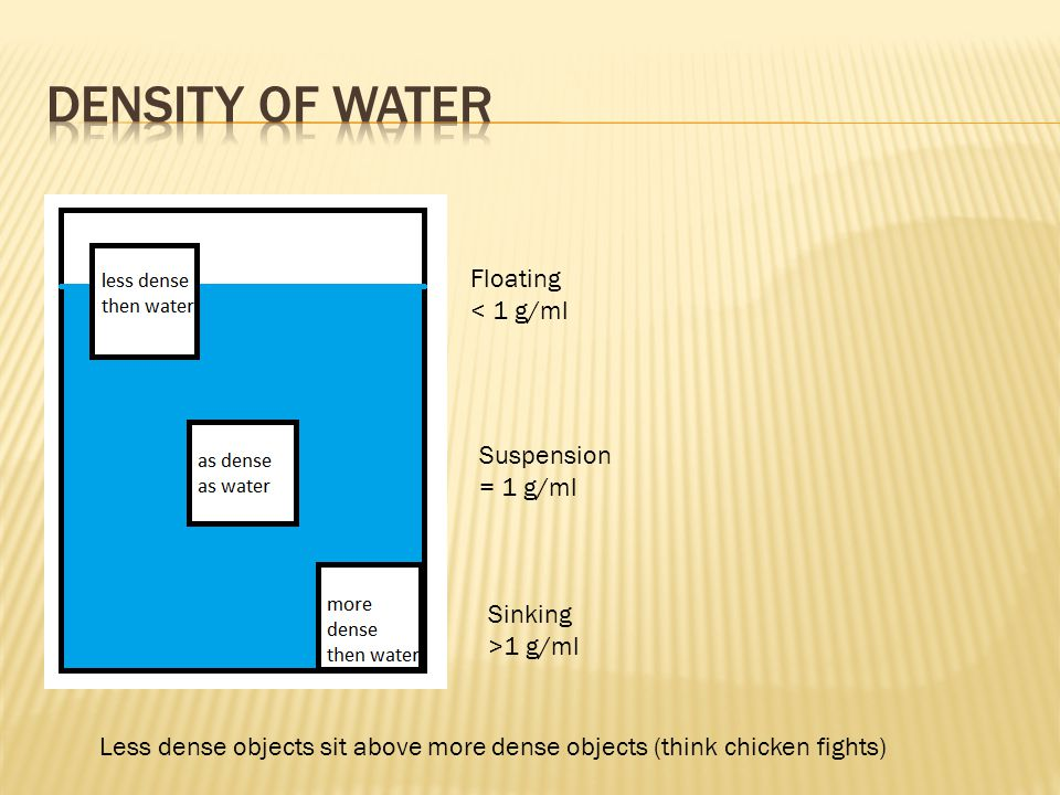 Density of water Floating < 1 g/ml Suspension = 1 g/ml Sinking