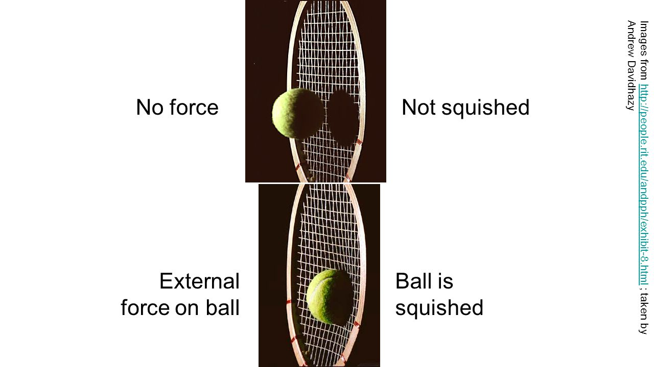 No force Not squished External force on ball Ball is squished