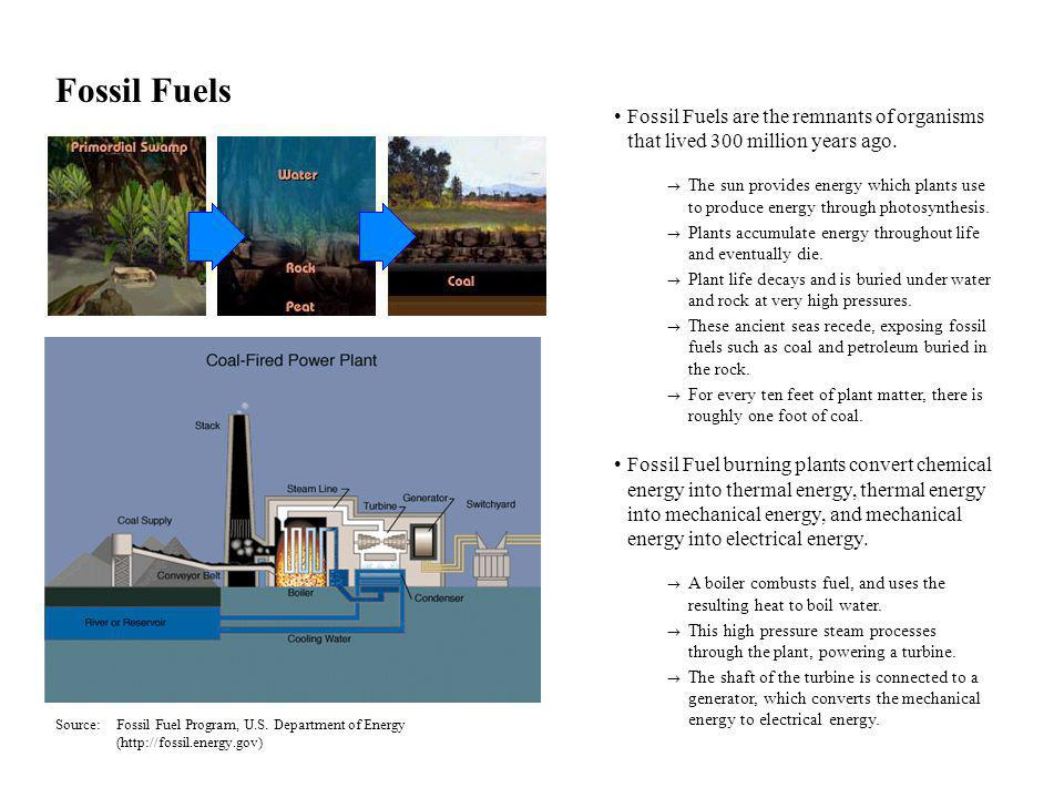 Fossil Fuels Fossil Fuels are the remnants of organisms that lived 300 million years ago.
