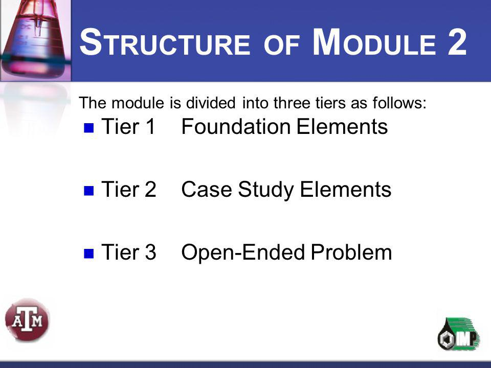 STRUCTURE OF MODULE 2 Tier 1 Foundation Elements