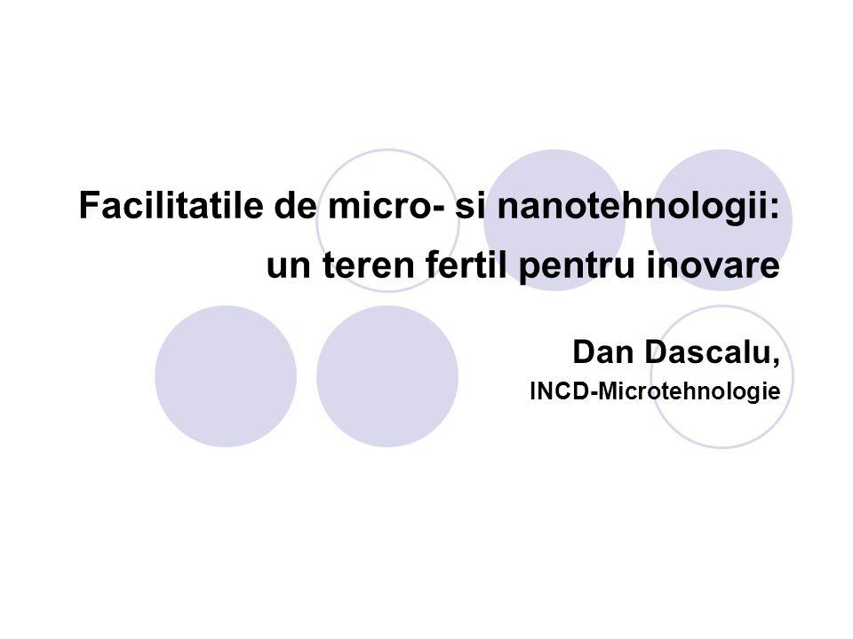 Dan Dascalu, INCD-Microtehnologie