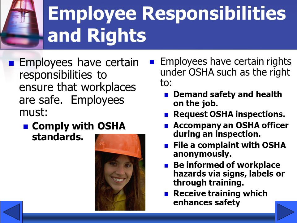 Employee Responsibilities and Rights