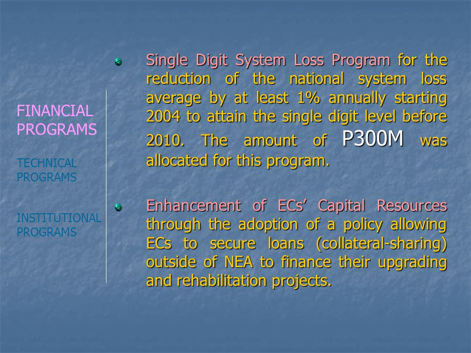 Single Digit System Loss Program for the reduction of the national system loss average by at least 1% annually starting 2004 to attain the single digit level before 2010. The amount of P300M was allocated for this program.