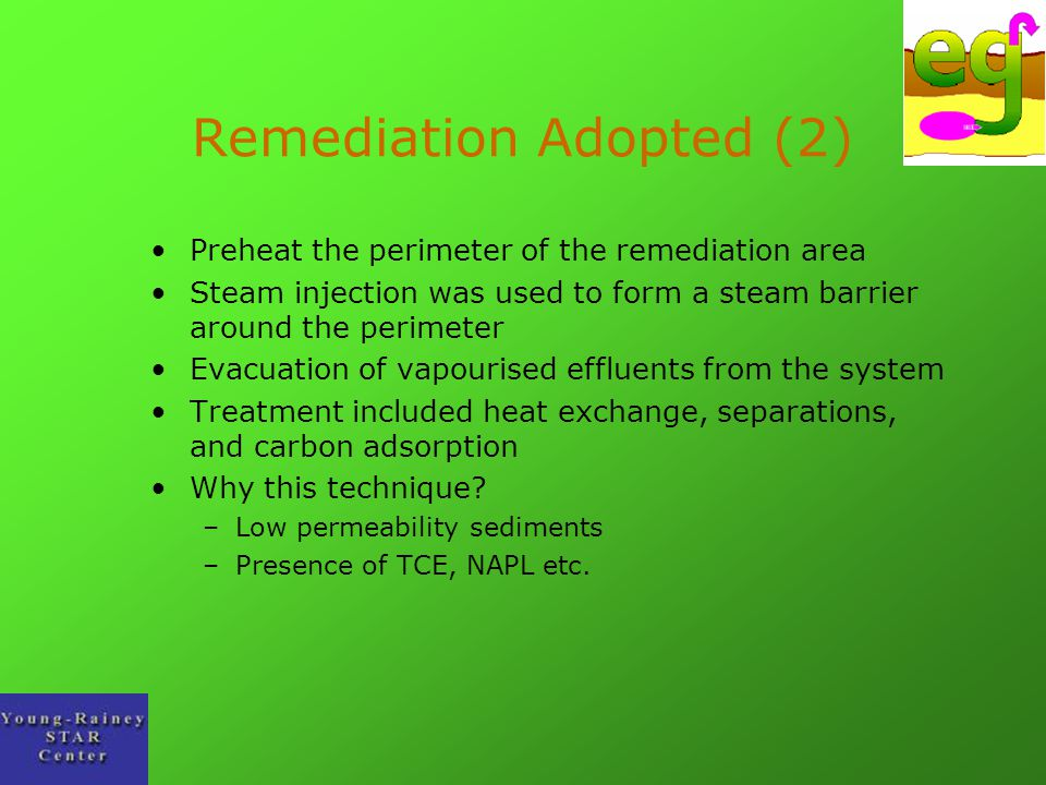Remediation Adopted (2)