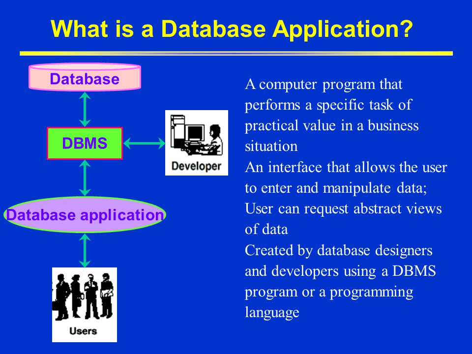 What is a Database Application
