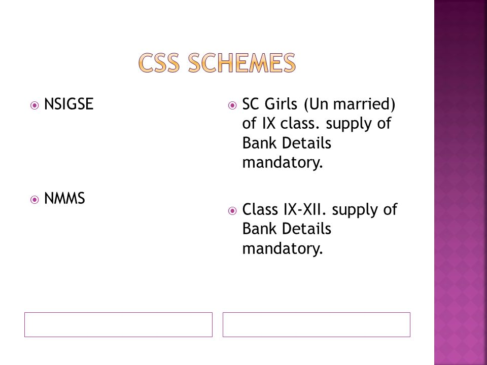 CSS SCHEMES NSIGSE NMMS