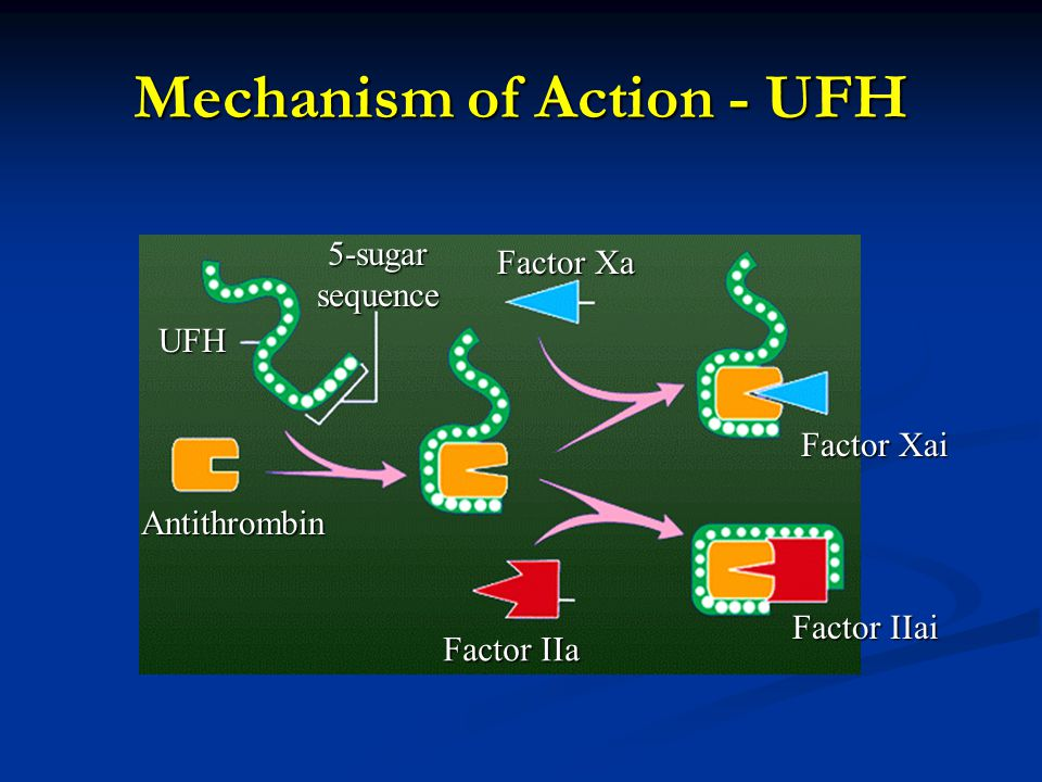 Mechanism of Action - UFH