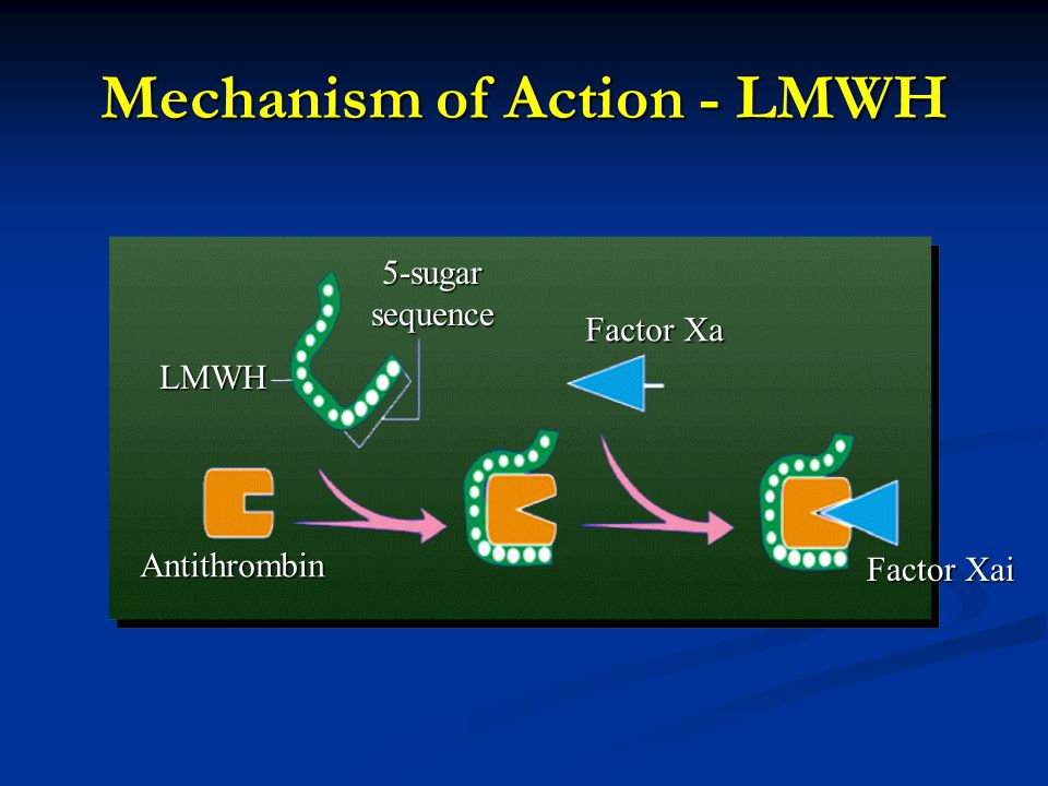 Mechanism of Action - LMWH