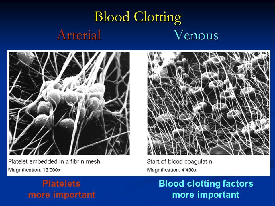 Blood Clotting Arterial Venous