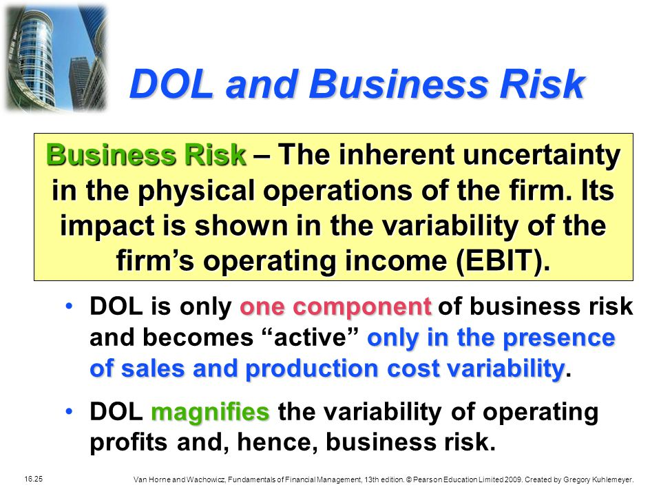 DOL and Business Risk