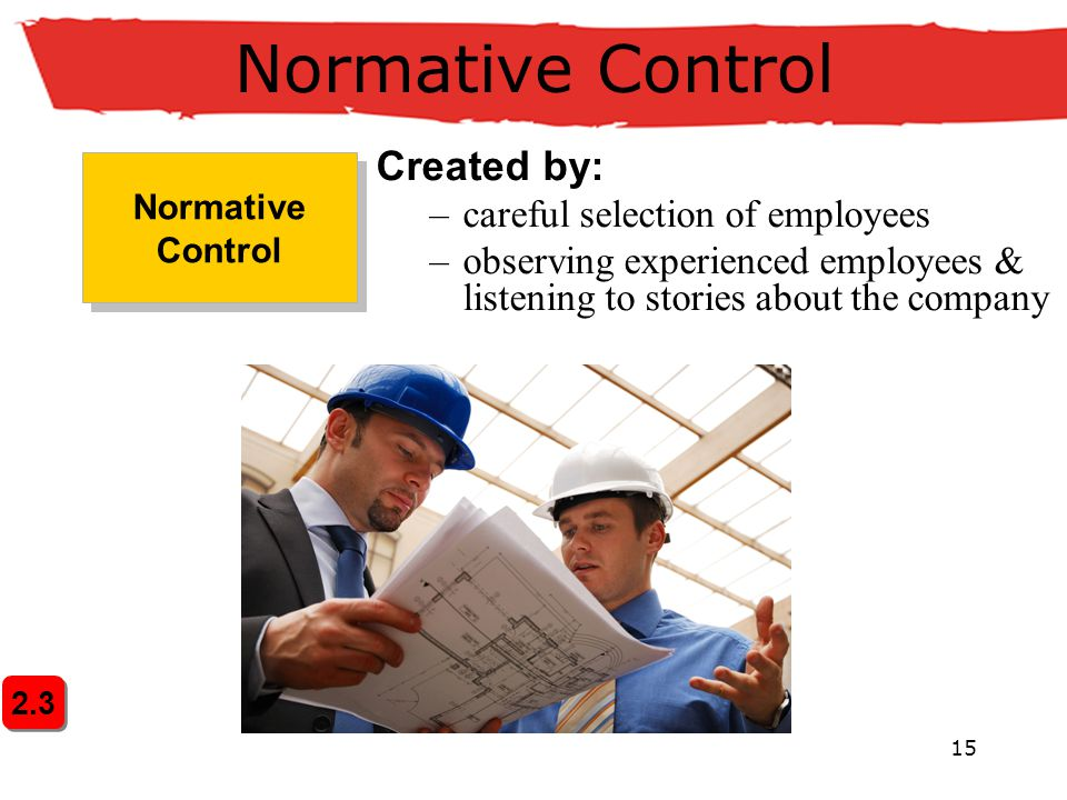 Normative Control Created by: careful selection of employees