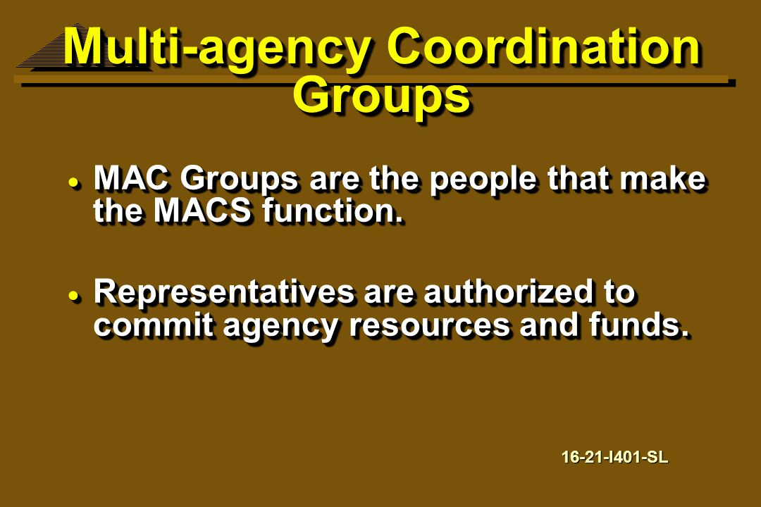 Multi-agency Coordination Groups