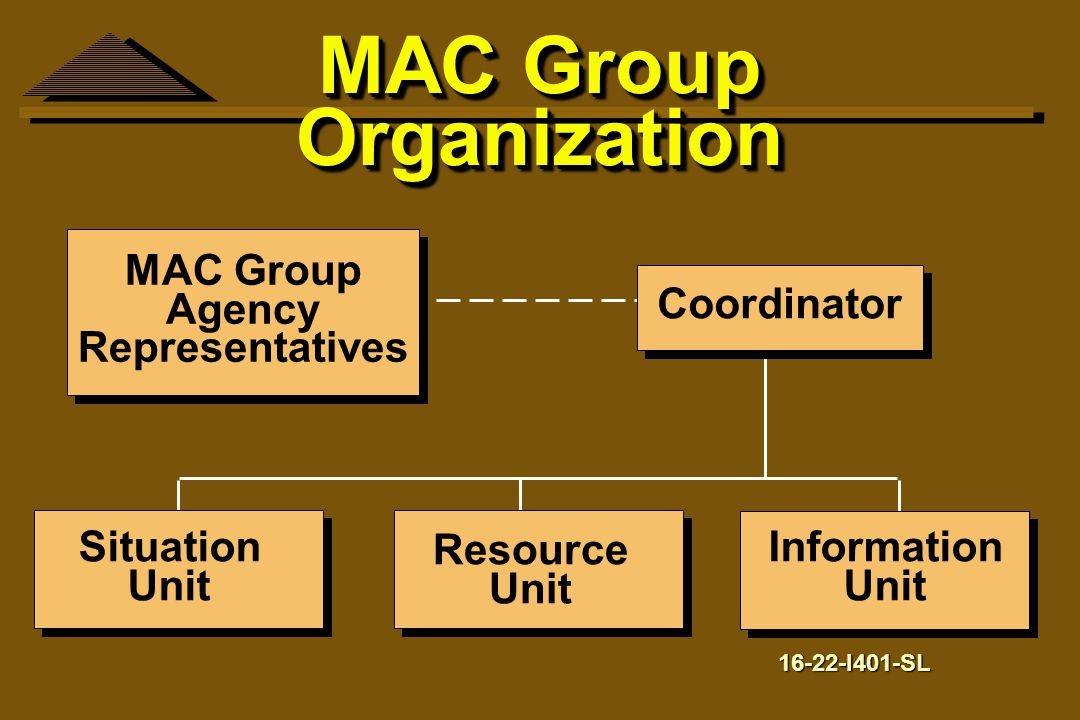 MAC Group Organization