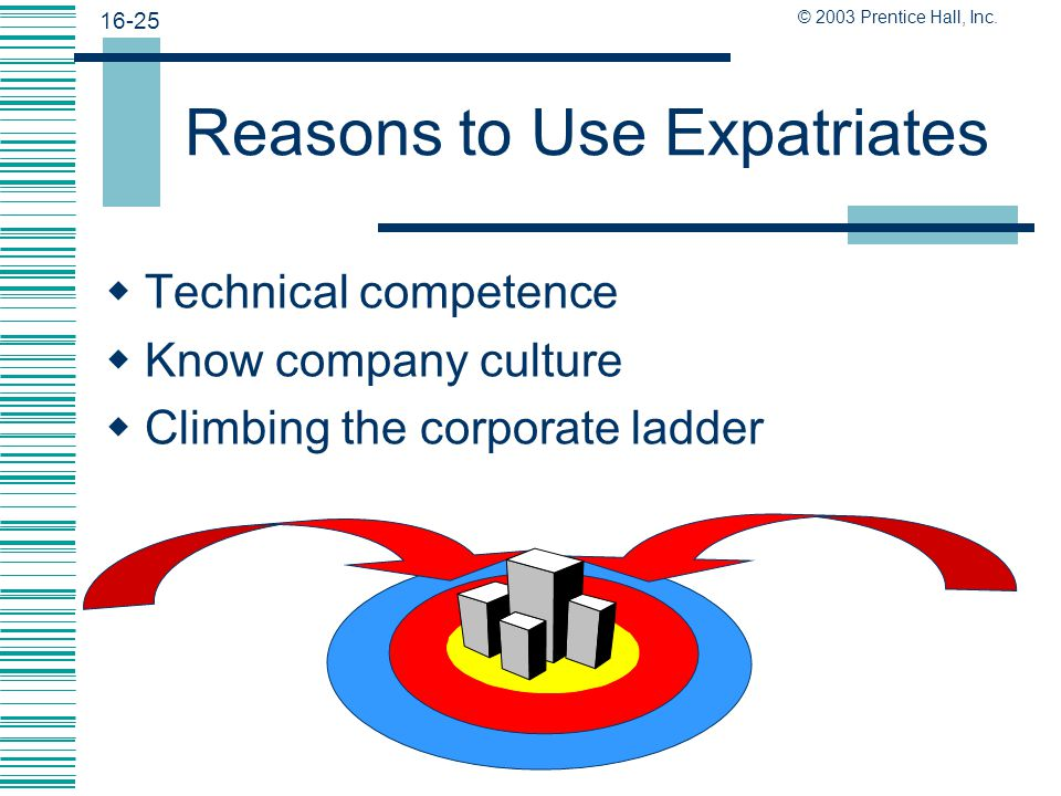 Reasons to Use Expatriates