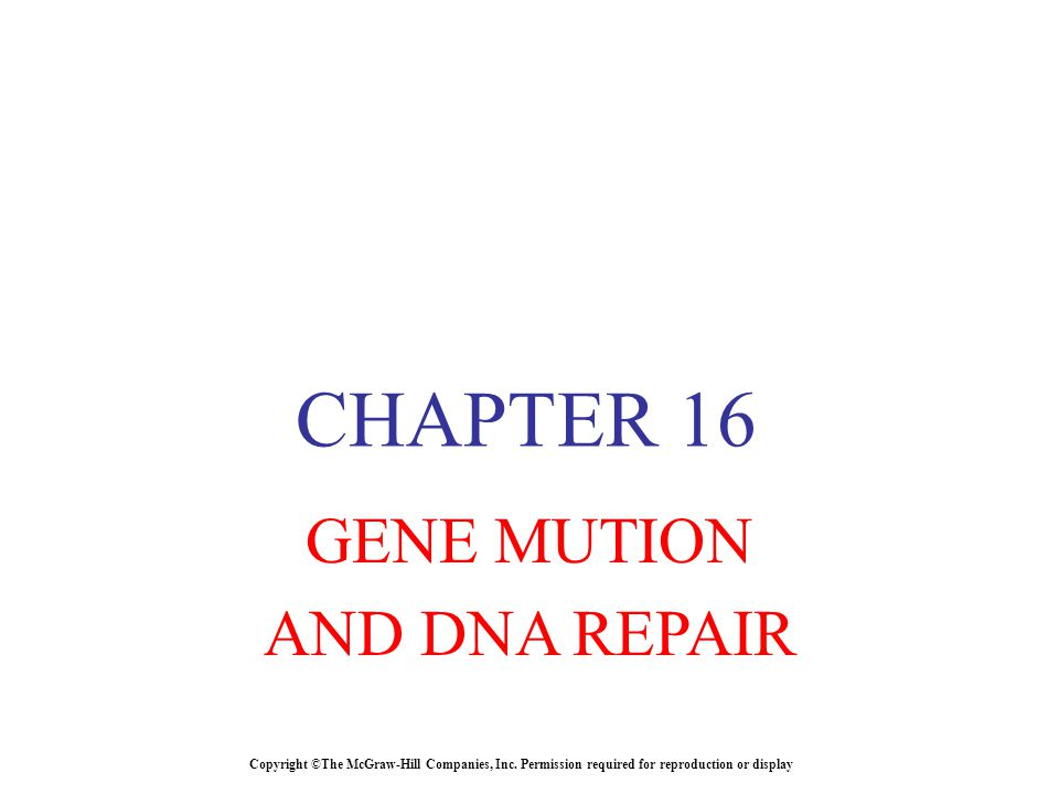 CHAPTER 16 GENE MUTION AND DNA REPAIR