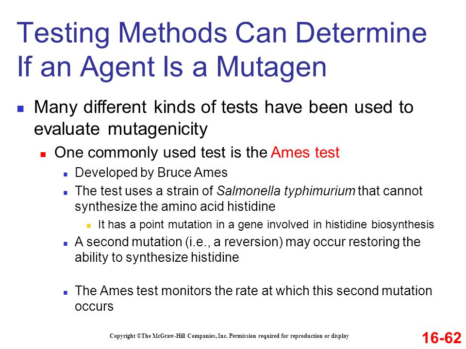 Testing Methods Can Determine If an Agent Is a Mutagen