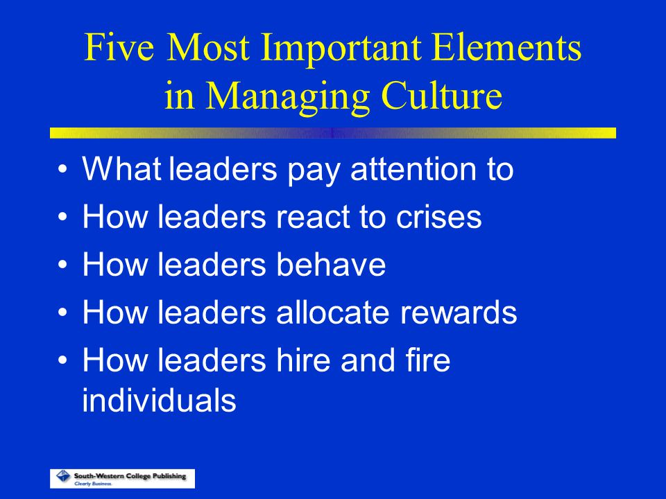 Five Most Important Elements in Managing Culture