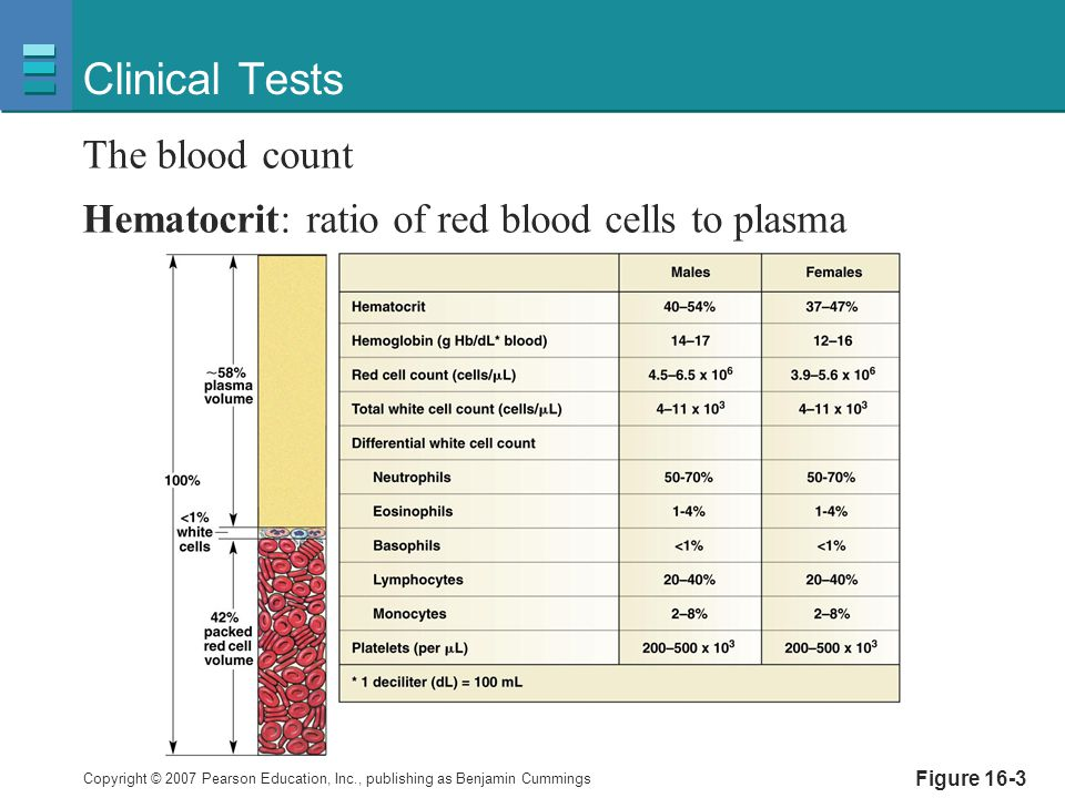 Clinical Tests The blood count