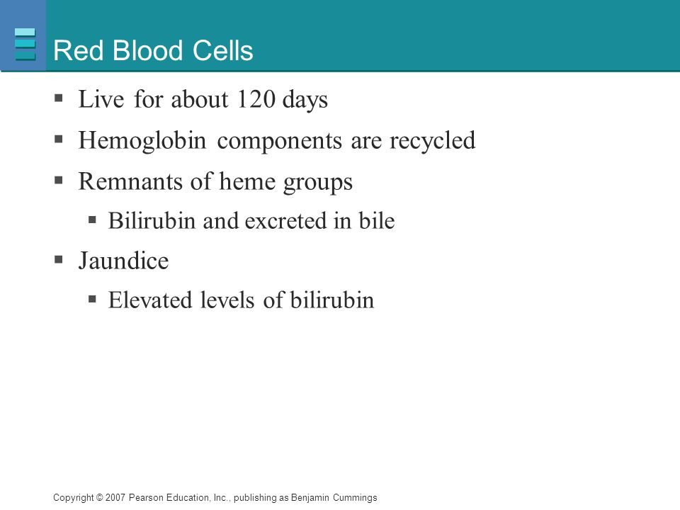 Red Blood Cells Live for about 120 days
