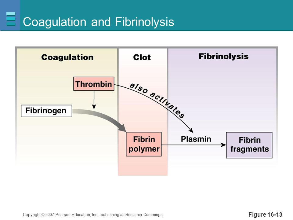 Coagulation and Fibrinolysis