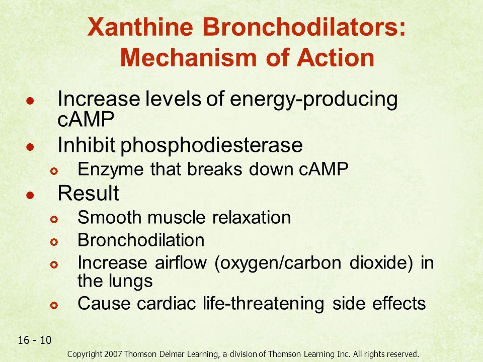 Xanthine Bronchodilators: Mechanism of Action