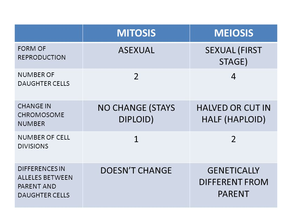 MITOSIS MEIOSIS ASEXUAL SEXUAL (FIRST STAGE) 2 4