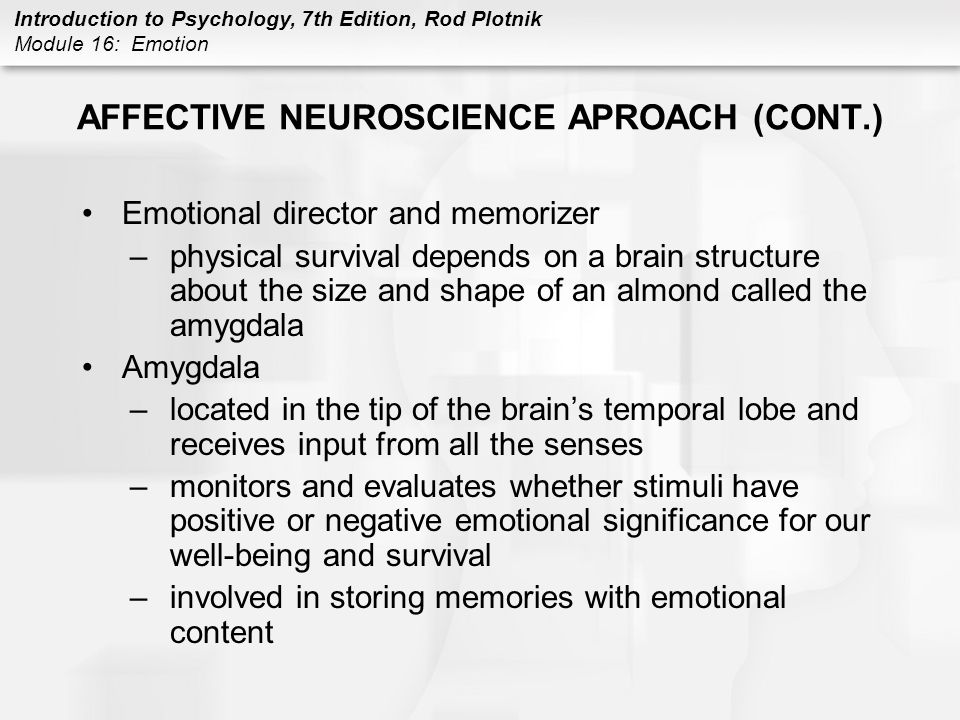 AFFECTIVE NEUROSCIENCE APROACH (CONT.)