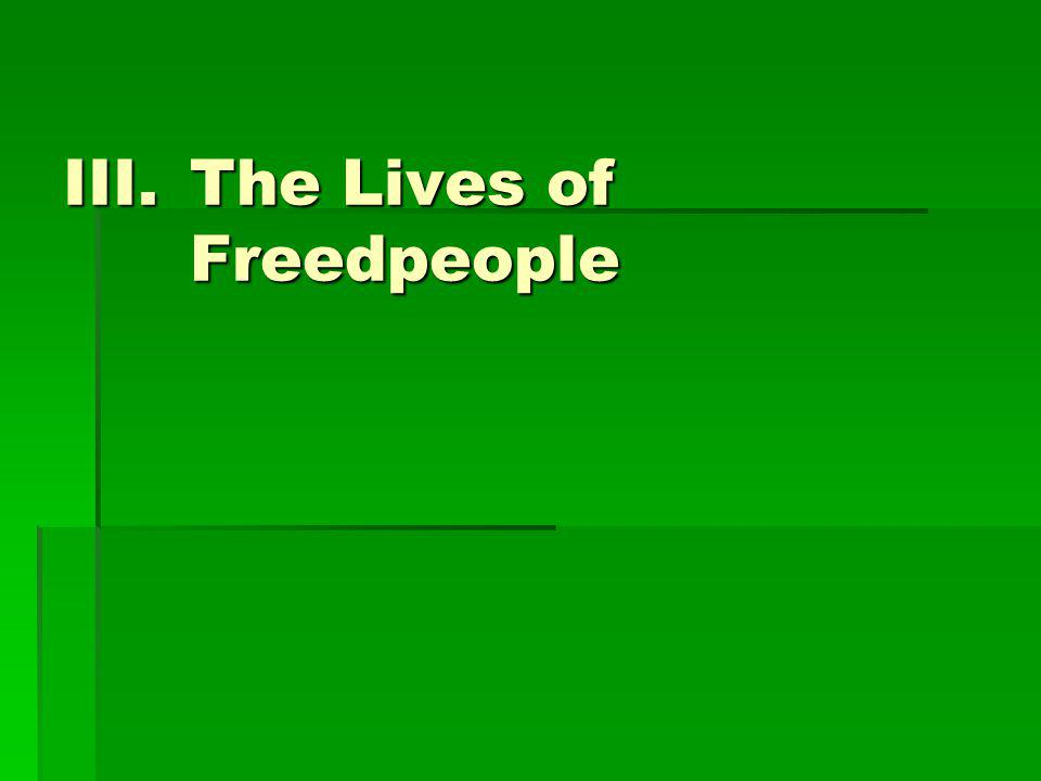 The Lives of Freedpeople