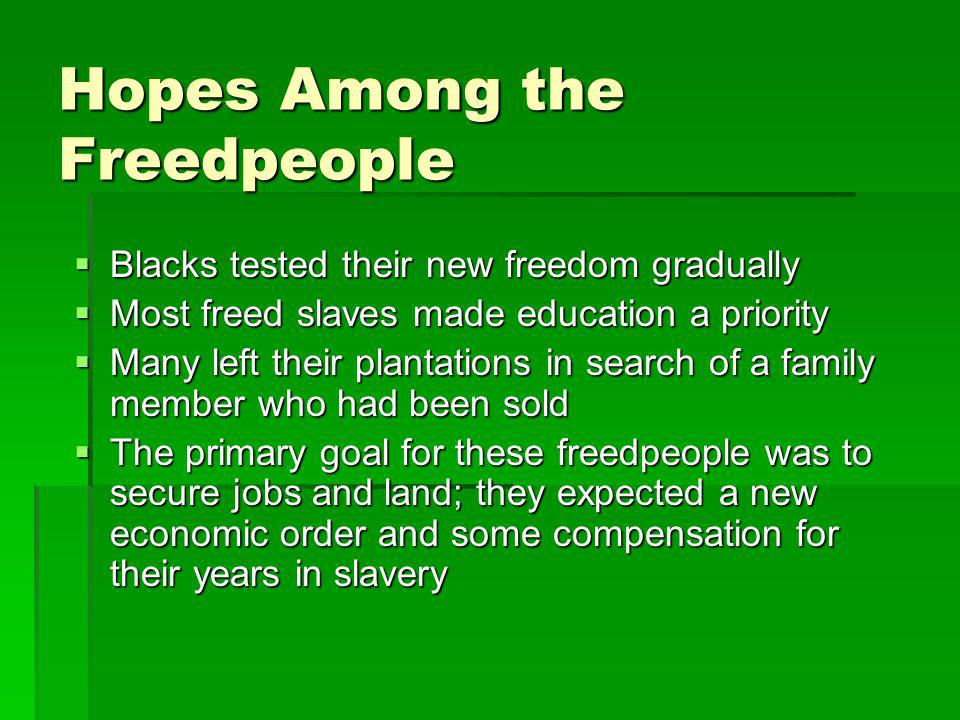 Hopes Among the Freedpeople