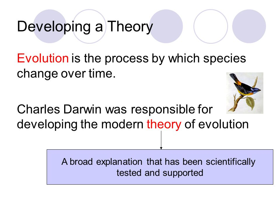 an in depth look at the factors that led to the introduction of the theory of evolution by charles d The hierarchy of human needs: self-transcendence and opportunities for theory  discover who you really are-- a more in-depth look at the process.