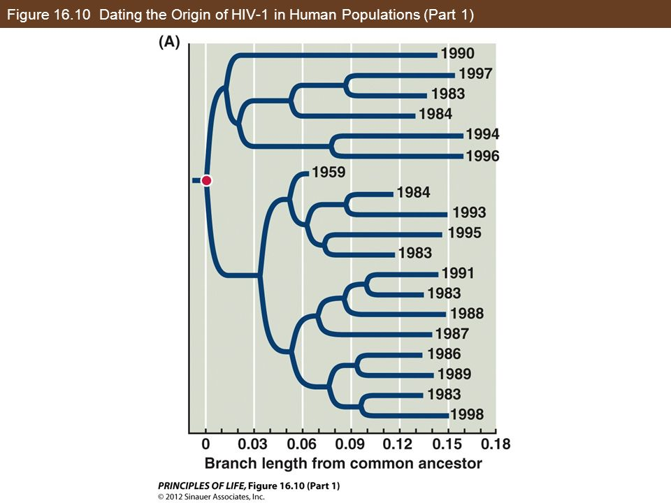 Figure 16.10 Dating the Origin of HIV-1 in Human Populations (Part 1)