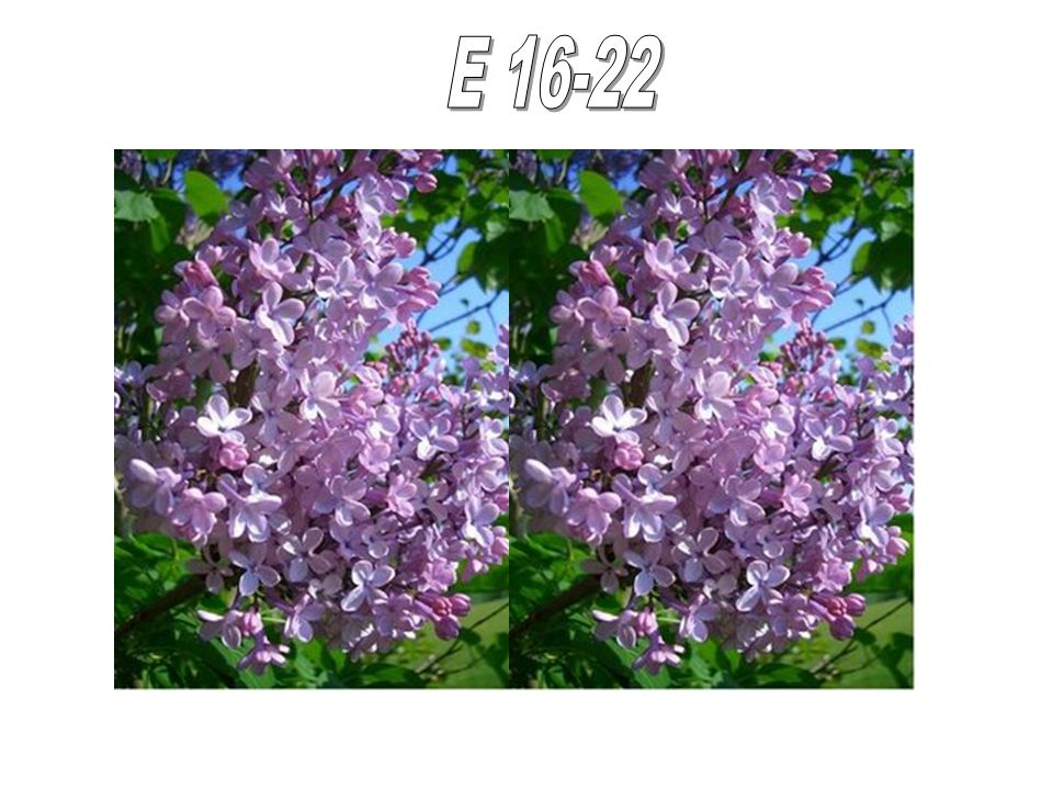 E 16-22