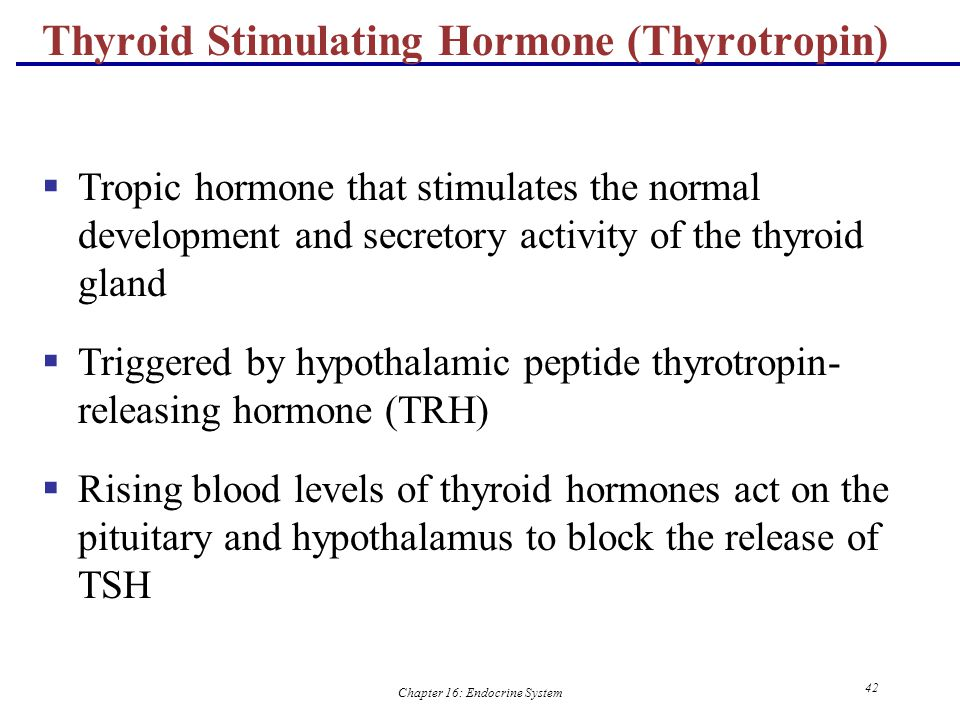 Thyroid Stimulating Hormone (Thyrotropin)