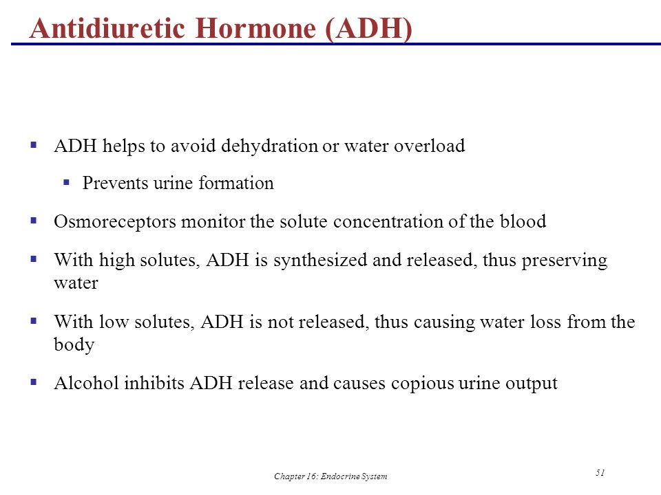 Antidiuretic Hormone (ADH)