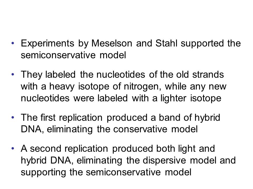 Experiments by Meselson and Stahl supported the semiconservative model