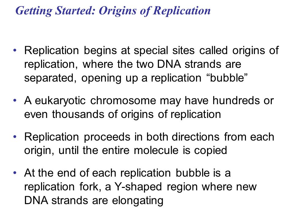 Getting Started: Origins of Replication