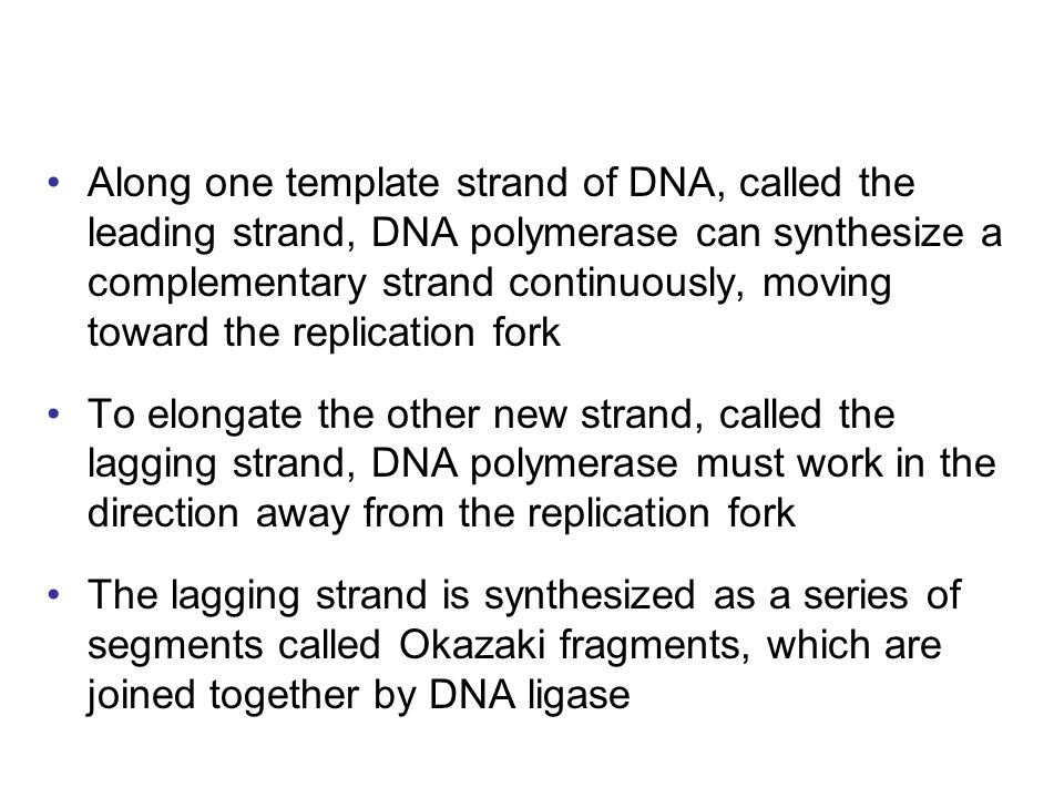 Along one template strand of DNA, called the leading strand, DNA polymerase can synthesize a complementary strand continuously, moving toward the replication fork